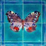 4 tile Peacock Butterfly panel